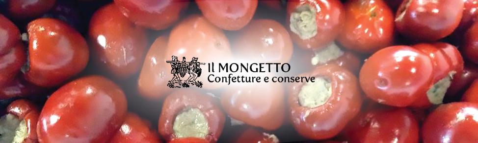 Il Mongetto