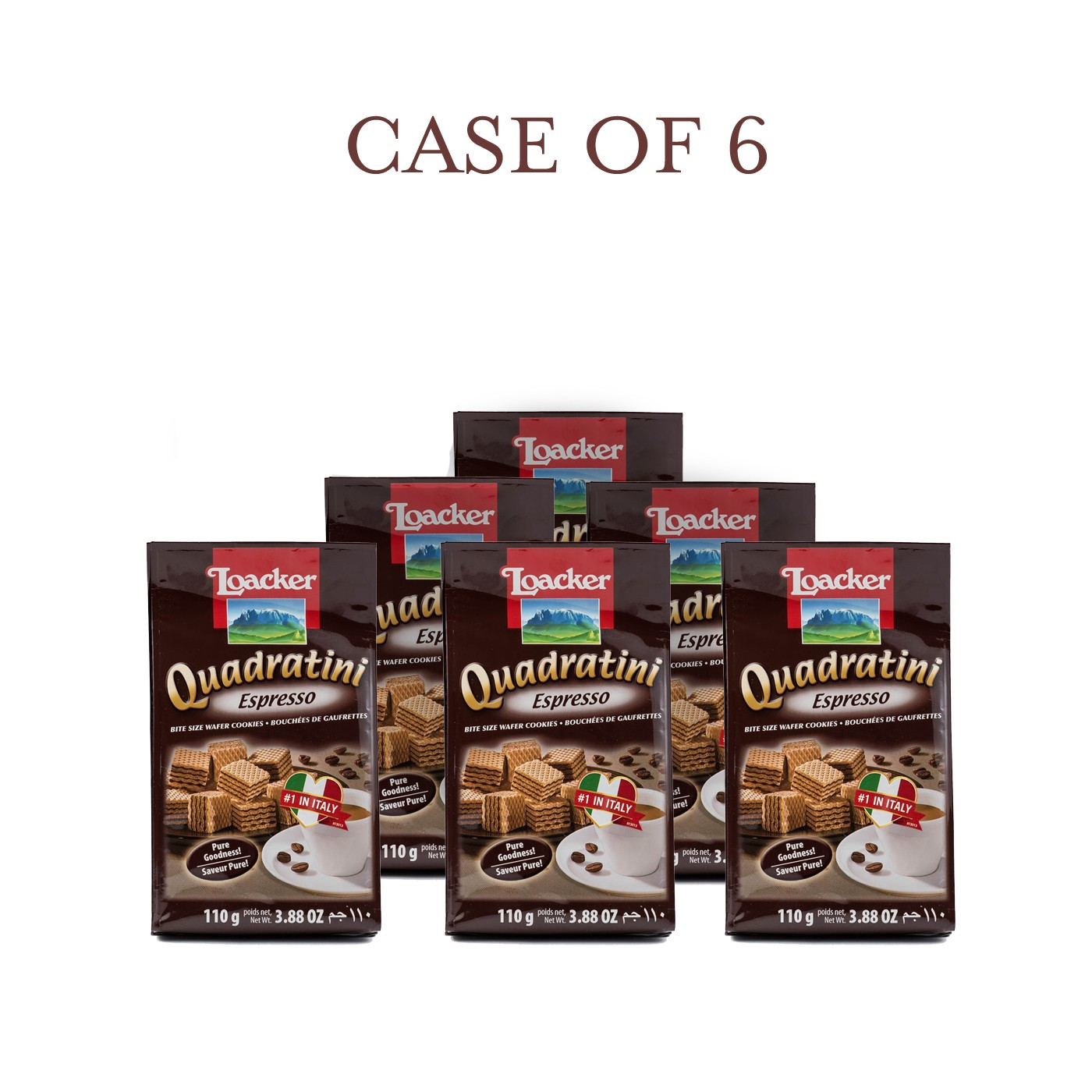 Espresso Quadratini - Case of 6