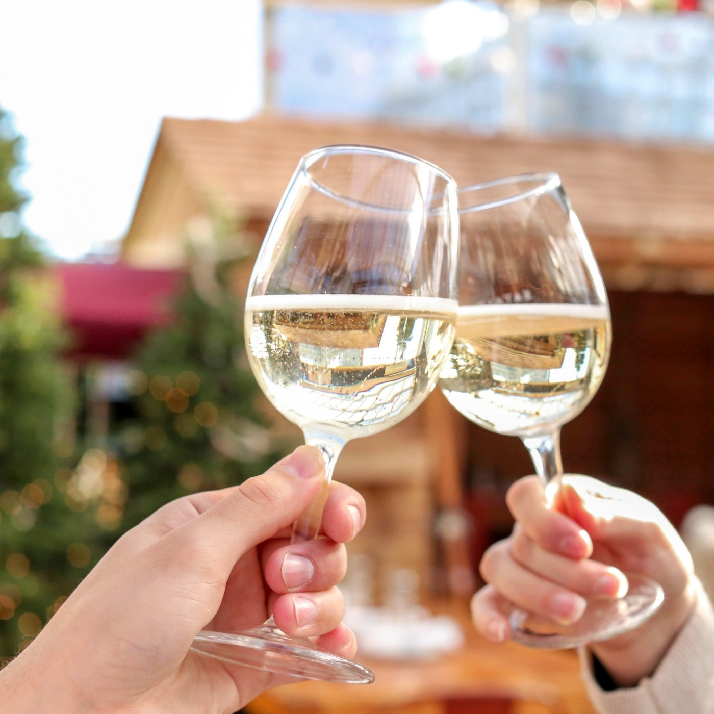 Winter Wine Festa