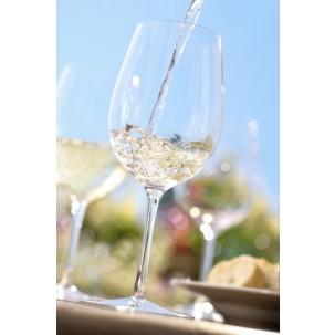Spring Wine Festa!