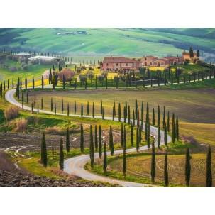 Cook Better, Live Better: I Sapori della Toscana - Flavors of Tuscany