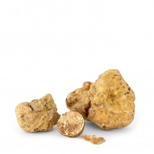 Fresh White Truffles 4 oz