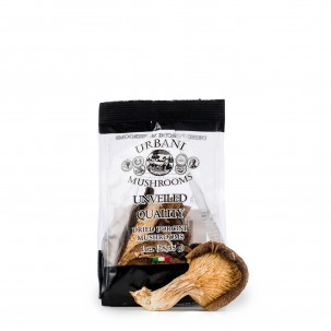Dried Porcini Mushrooms 1 oz