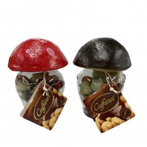 Milk Chocolates in Mushroom Jar 6 oz